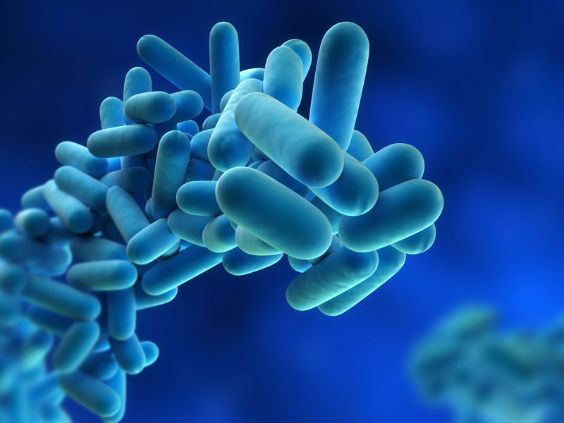 Legionella & Plumbing Codes