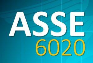 ASSE 6020